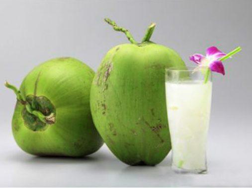 Mơ thấy quả dừa – Giải mã điềm báo giấc mơ thấy quả dừa
