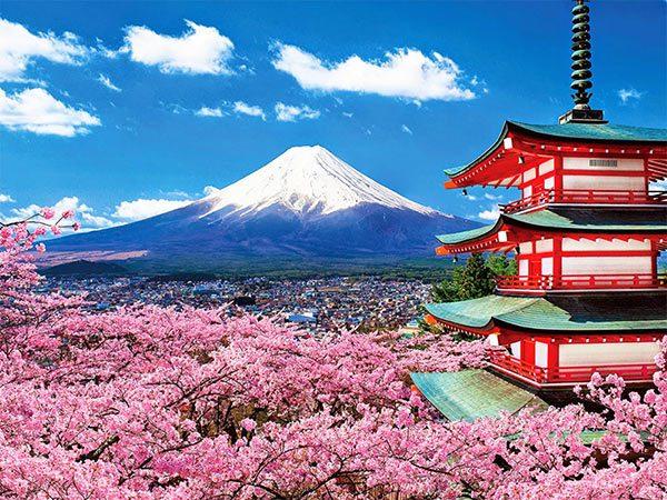 Ý nghĩa và con số may mắn của giấc mơ thấy đi du lịch