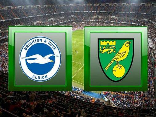Nhận định Brighton vs Norwich, 22h00 ngày 2/11