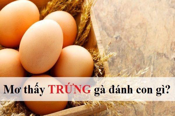 Mơ thấy trứng điềm báo gì